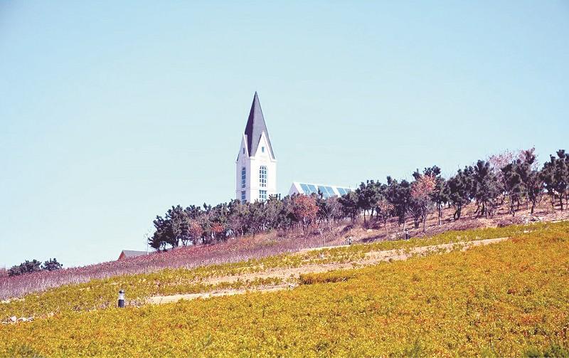 青岛藏马山乡村(国际)生态旅游度假区将于