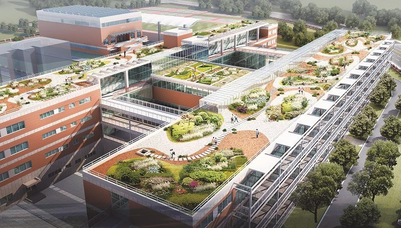 屋顶花园绿化设计,在屋顶四周安装格栅,保证屋顶空间的安全性;依据